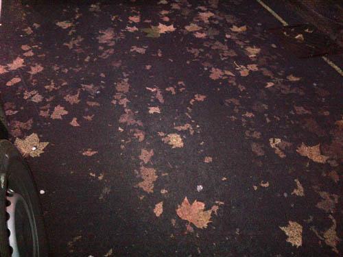 Aldwych Leaf