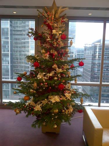 Xmas Tree at Nt 2012