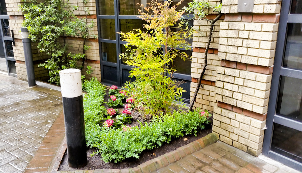 Steer davies Gleave replant 2014 05 16-2