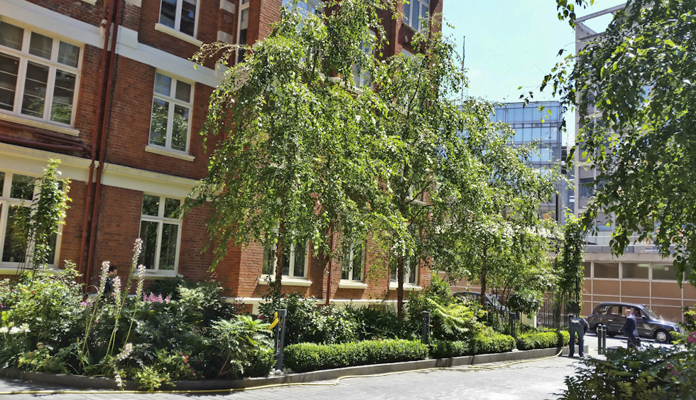St Ermin's Hotel Garden