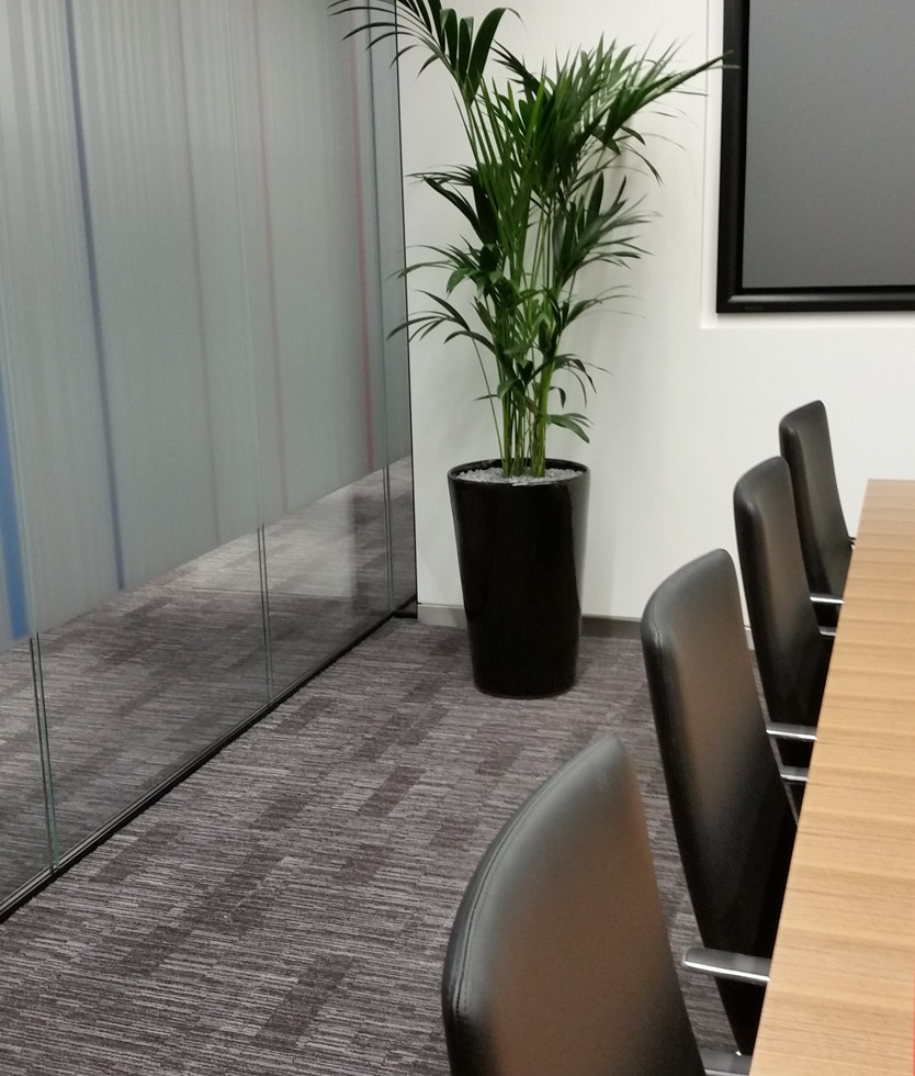 interior landscaping office. Office Plants - Ascot Underwriting Interior Landscaping