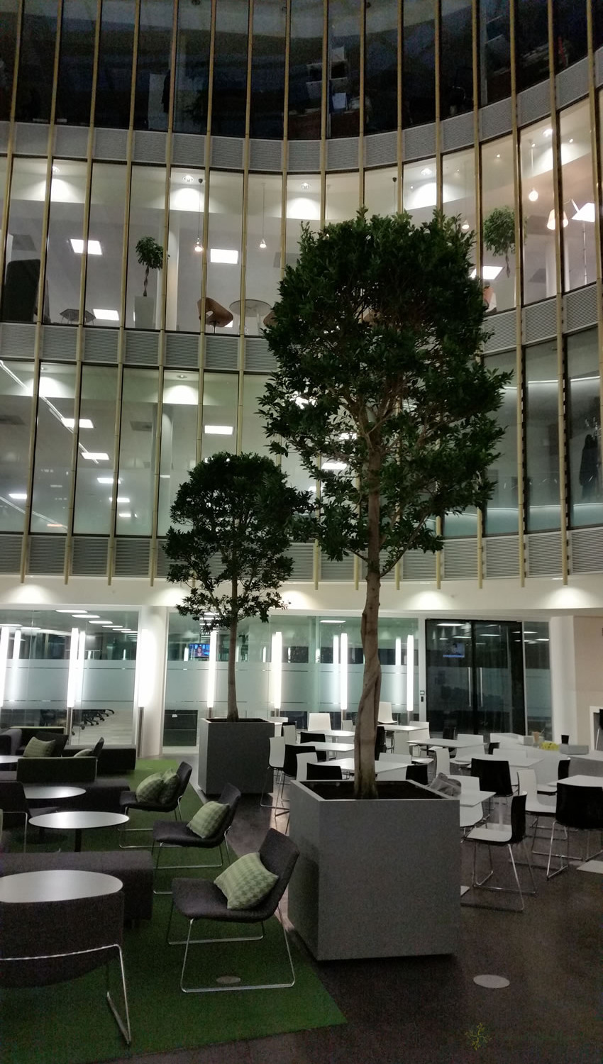 Indoor landscaping - London office